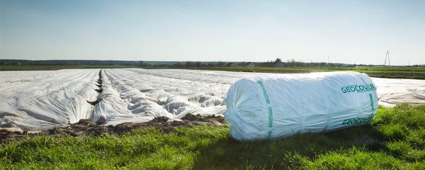 Zastosowanie okrywowe agrowłókniny