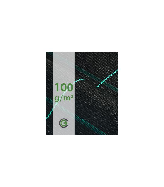 P100g/m2